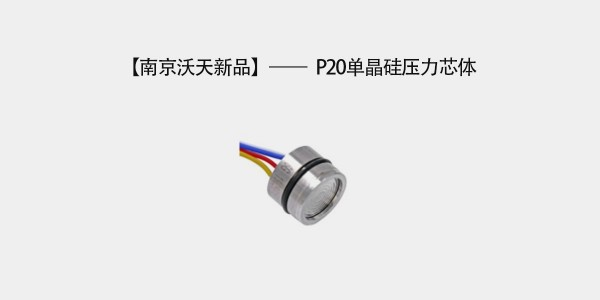 Nanjing Wotian New Product—P20 Monocrystalline Silicon Pressure Core